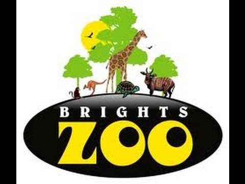 Image of Bright's Zoo